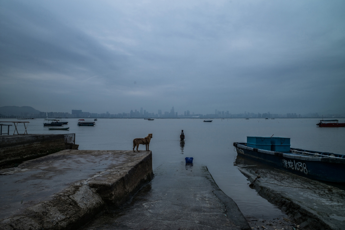 A fisherman walks to the sea with the backdrop of Shenzhen skyline on March 31, 2016 in Hong Kong. (Lam Yik Fei/Getty Images)