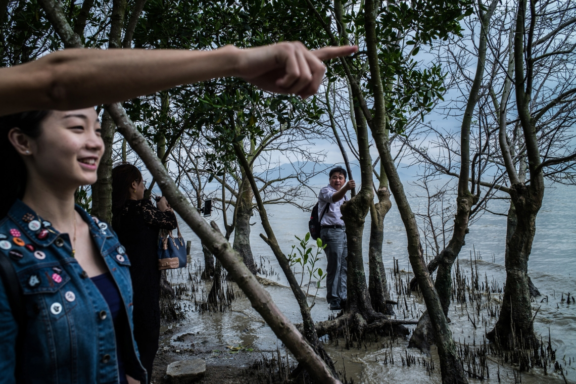 People hang around at mangrove forest at Futian border on April 3, 2016 in Shenzhen, China. (Lam Yik Fei/Getty Images)