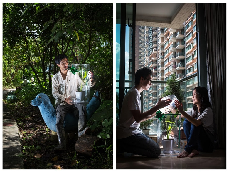 North East New Territories Suburbanite: Chi Ho (Farmer, Video Artist, Conservation Docent) <P>Venue: Mashipo, North East New Territories </P><P>Plant: Taro <P>Urbanites: Ah Tat, Heidi (husband, wife) </P><P>Venue: Residence Oasis, Tseung Kwan O  </P><P>This young couple loves to cultivate plants on their small balcony. Ah Tat described where they live as 'walled buildings'. Growing plants is one of the best ways to clear their minds. Chi Ho gave up a routine job at a television company. He decided to become a farmer. After joining a farming course, his love for the land and nature grew strong. He insisted on regularly collecting kitchen waste in the city for fertilizer, to bring back to the land what was owed by the city. He also intended to educate urbanites on the concept of mutual aid between the city and the rural area. He wants to be a humble farmer. </P>