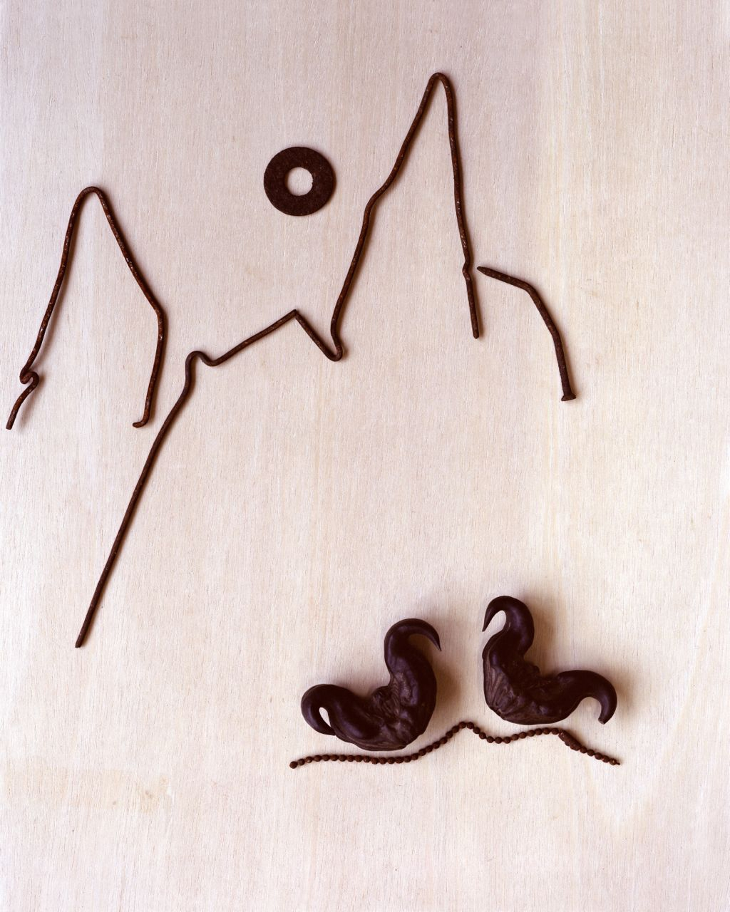 water caltrop / collected 2007 <p>wire / nails / ring / chain / collected 1995-2005